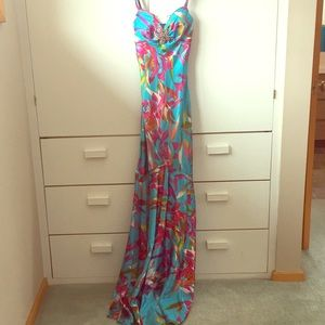 Cache pendent evening gown- AMAZING! 4
